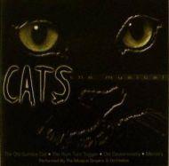 Andrew Lloyd Webber - Cats - The Musical (CD;Album)